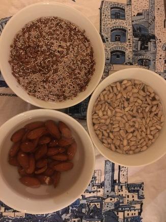 Seeds germinating to make milks and juices / Sementes germinando para fazer leites e sucos /