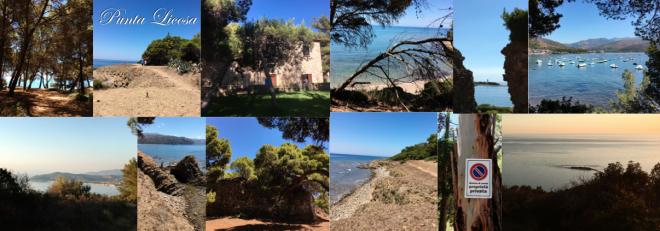 Punta Licosa 2